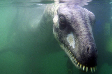 Is The Loch Ness Monster Dead Zoomer Lindaseccaspina