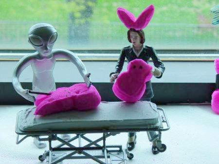 Peeps_In_Space_Alien_Peep_Autopsy-1lg.jpg