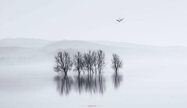 Nian-Lake-black-necked-crane-nature-reserve-950x550
