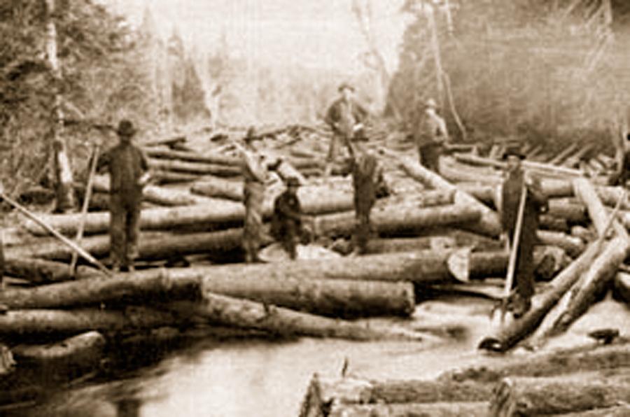logs-on-river1.jpg