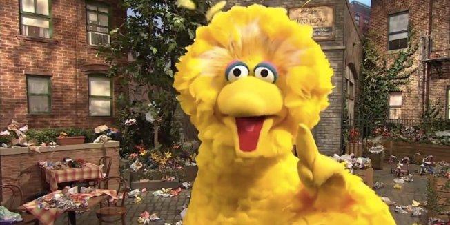 o-BIG-BIRD-BIG-PUN-RAP-facebook.jpg