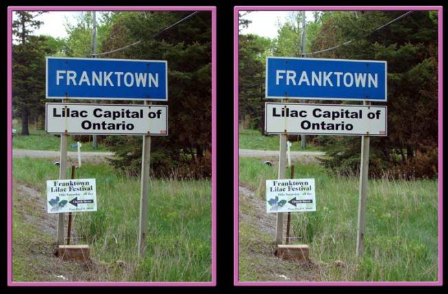 Franktown15.jpg