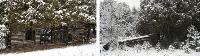 0003a-abandoned-dwelling-and-driveshed.jpg